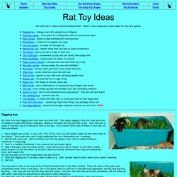 Rat Toy Ideas