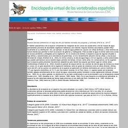 Rata de agua - Arvicola sapidus - Hábitat
