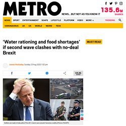 METRO_CO_UK 23/08/20 'Water rationing and food shortages' if second wave clashes with no-deal Brexit