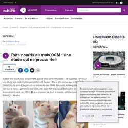 Rats nourris au maïs OGM : une étude qui ne prouve rien