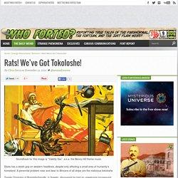 Rats! We've Got Tokoloshe!