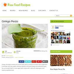 Raw Food Recipes – Ginkgo Pesto