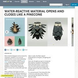Water-reactive material opens and closes like a pinecone