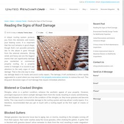 Reading the Signs of Roof Damage
