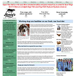 The Dog And Bones Raw Pet Food Supplier