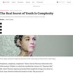 The Real Secret of Youth Is Complexity