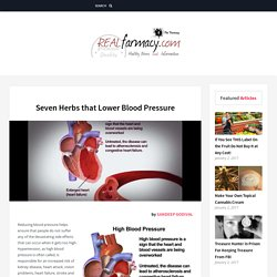Seven Herbs that Lower Blood Pressure