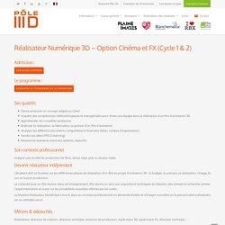 Réalisateur Numérique 3D - Option Cinéma & FX save - Pôle 3D