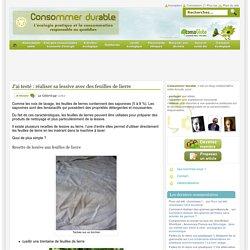 J'ai testé : réaliser sa lessive avec des feuilles de lierre Consommer Durable