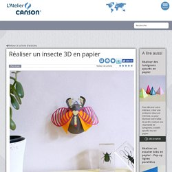 Réaliser un insecte 3D en papier