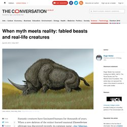 When myth meets reality: fabled beasts and real-life creatures