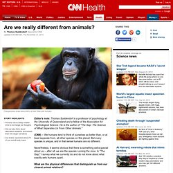 Are we really different from animals?