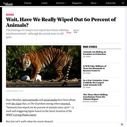 Have We Really Killed 60 Percent of Animals Since 1970?
