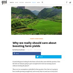 Why we really should care about boosting farm yields