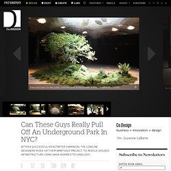 Can These Guys Really Pull Off An Underground Park In NYC?