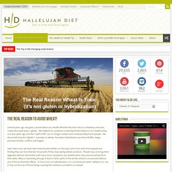 The Real Reason to Avoid Wheat! - Health News from Hallelujah Diet
