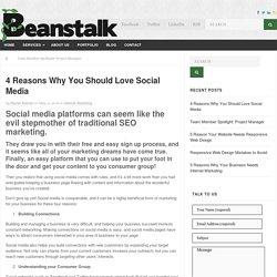 4 Reasons to Love Social Media-Beanstalk Web Solutions Blog