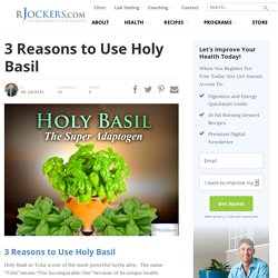 3 Reasons to Use Holy Basil - DrJockers.com