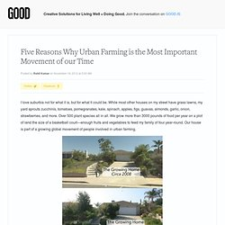 Five Reasons Why Urban Farming is the Most Important Movement of our Time