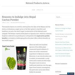 Reasons to Indulge into Nopal Cactus Powder