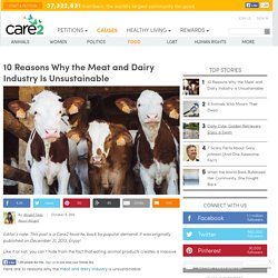 10 Reasons Why The Meat And Dairy Industry Is Unsustainable