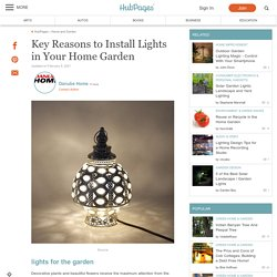 Key Reasons to Install Lights in Your Home Garden