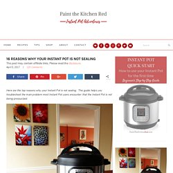 16 Reasons Why Your Instant Pot Is Not Sealing - Paint The Kitchen Red