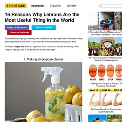 16Reasons Why Lemons Are the Most Useful Thing inthe World
