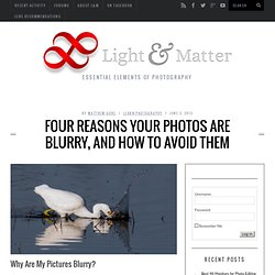 Four Reasons Your Photos are Blurry, And How to Avoid Them » Light And Matter