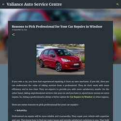 Reasons to Pick Professional for Your Car Repairs in Windsor