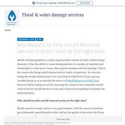 Key reasons to hire mould Removal service in Gold Coast at the right time – Flood & water damage services