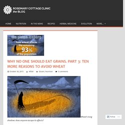 Why no one should eat grains. Part 3: Ten more reasons to avoid wheat – Rosemary Cottage Clinic Blog
