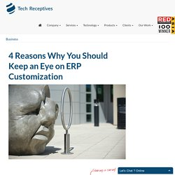 4 Reasons Why You Should Keep an Eye on ERP Customization
