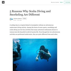 5 Reasons Why Scuba Diving and Snorkeling Are Different