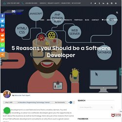 5 Reasons you Should be a Software Developer