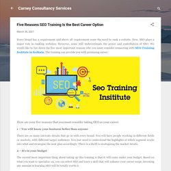 Five Reasons SEO Training Is the Best Career Option