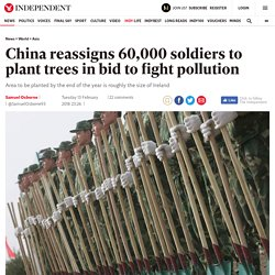 China reassigns 60,000 soldiers to plant trees in bid to fight pollution