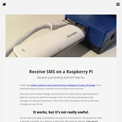 Receive SMS on a Raspberry Pi