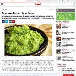 Recept: Guacamole med bondböna