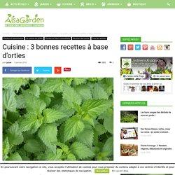 Cuisine : 3 bonnes recettes à base d'orties - Blog Jardin Alsagarden - le magazine des jardiniers curieux