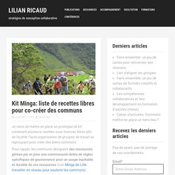 Kit Minga: liste de recettes libres pour co-créer des communs – Lilian Ricaud
