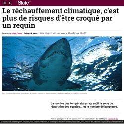 Le réchauffement climatique, c'est plus de risques d'être croqué par un requin