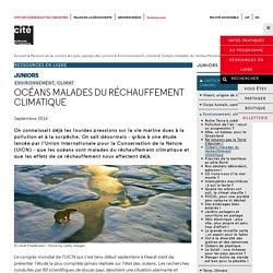 Océans malades du réchauffement climatique - L'actu des juniors