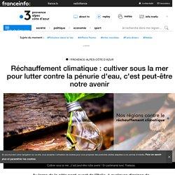 Réchauffement climatique : cultiver sous la mer pour lutter contre la pénurie d'eau, c'est peut-être notre avenir - France 3 Provence-Alpes-Côte d'Azur