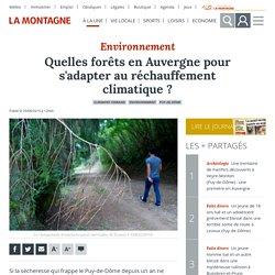 LA MONTAGNE 29/08/19 Quelles forêts en Auvergne pour s'adapter au réchauffement climatique ?