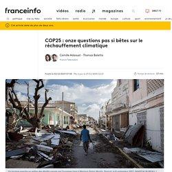 COP25 : onze questions pas si bêtes sur le réchauffement climatique