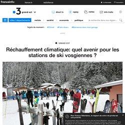 Réchauffement climatique: quel avenir pour les stations de ski vosgiennes ?