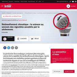 FRANCE INTER 02/09/20 LE ZOOM DE LA REDACTION - Réchauffement climatique : la science au secours des vignobles accablés par la sécheresse