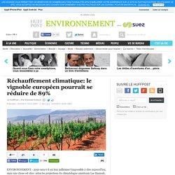 Réchauffement climatique: le vignoble européen pourrait se réduire de 89%