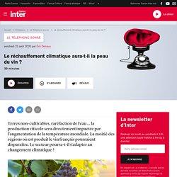 FRANCE INTER 21/08/20 LE TELEPHONE SONNE - Le réchauffement climatique aura-t-il la peau du vin ?